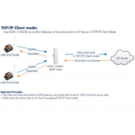 OLG02 Outdoor Dual Channels LoRa IoT Gateway