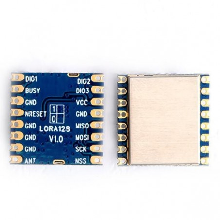 DWM-LoRa1280 /LoRa1281 SX1280 /SX1281 2.4G LoRa Range measurement wireless module