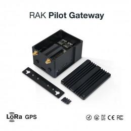 DWM-RAK7243 Pilot LoRa...
