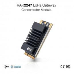 RAK2247 LoRa Gateway mPCIE...